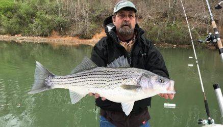 Saluda John Fishing Guide